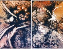 Liaison florale VI, lithographie sans eau, 10x15cm